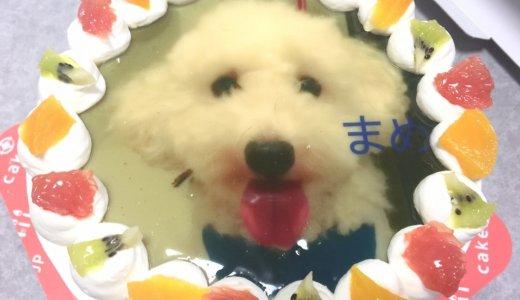 通販で買える!クリスマス・誕生日は、オーダーケーキ(写真・似顔絵ケーキ)に決まり!!
