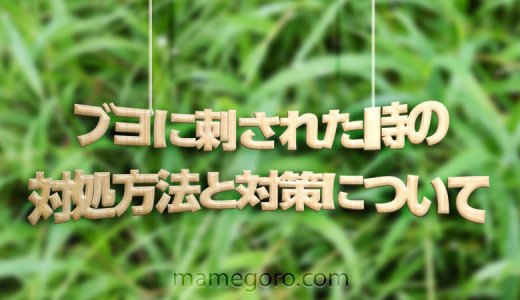 庭の草むしりをしていたらブヨに刺された!ブヨに刺されたらどうする?対処方法・予防方法は?【青あざ・発熱・痒み・腫れ】